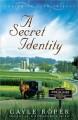 Go to record A secret identity