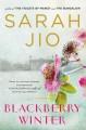 Go to record Blackberry winter : a novel