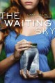Go to record The waiting sky