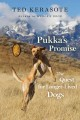 Go to record Pukka's promise : the quest for longer-lived dogs