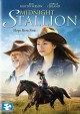 Go to record Midnight stallion [videorecording]