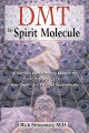 Go to record DMT : the spirit molecule : a doctor's revolutionary resea...