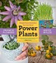 Go to record Power plants : simple home remedies you can grow