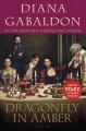 Go to record Dragonfly in amber : a novel