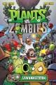 Go to record Plants vs. zombies. Lawnmageddon