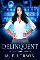 Go to record Delinquent