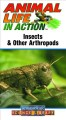 Go to record Insects and other arthropods. [videorecording]