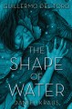 Go to record The shape of water