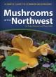 Go to record Mushrooms of the Northwest : a simple guide to common mush...