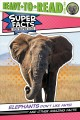 Go to record Elephants don't like ants! and other amazing facts