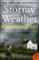 Go to record Stormy weather : a novel